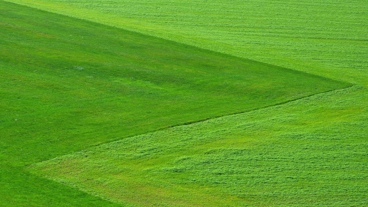 Подготвя се забрана за обработка на пасища след 11 часа в Хасковска област