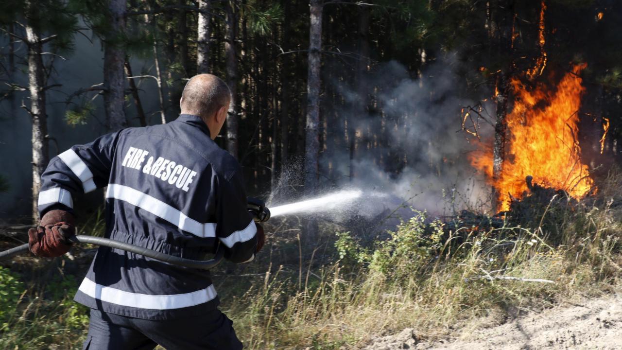 "Пожар горя край местността ""Болата"""
