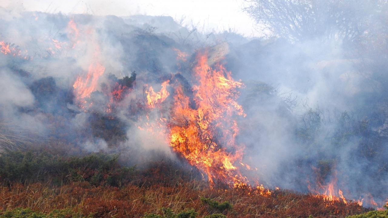 Екстремален индекс за пожароопасност в 15 области на страната