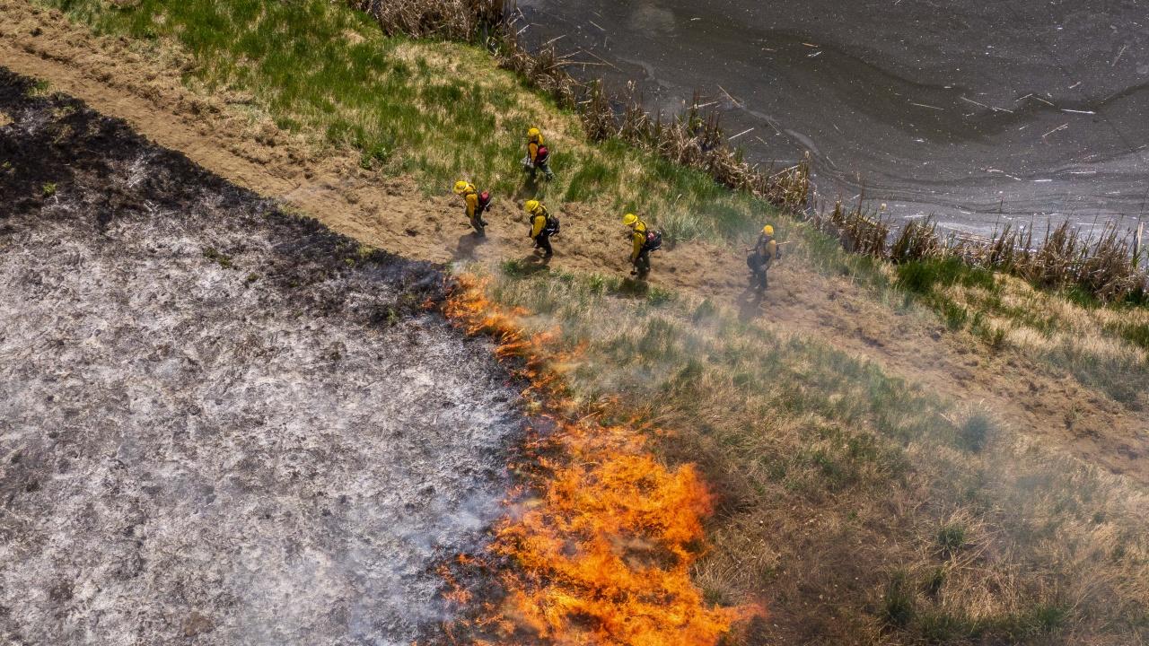 Огнен ад в Сардиния! Стихията изпепели около 20 000 хектара
