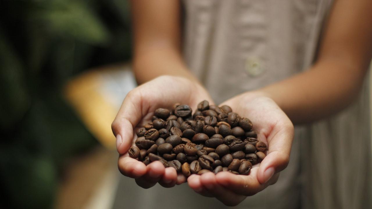 Кафето поскъпва заради слаба реколта