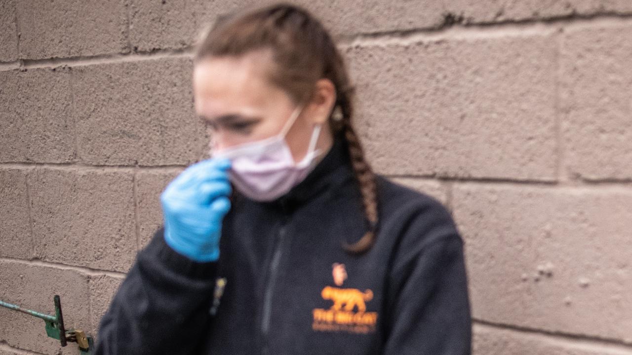Министерство в САЩ задължи служителите да носят маски