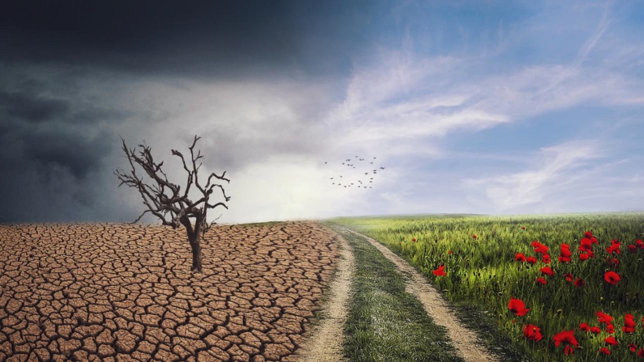 Близо 50% от българите знаят за климатичните промени