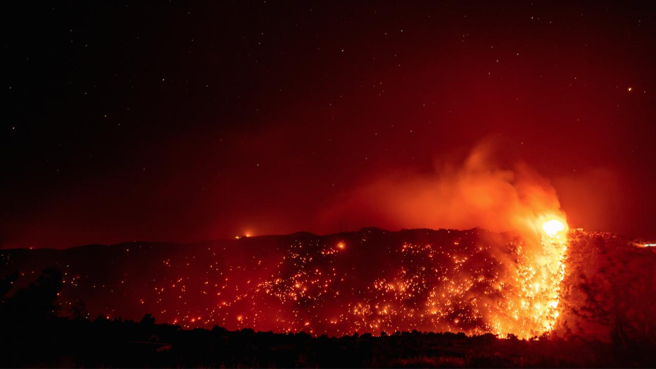 Почти всички огнища на горските пожари в Турция са овладени