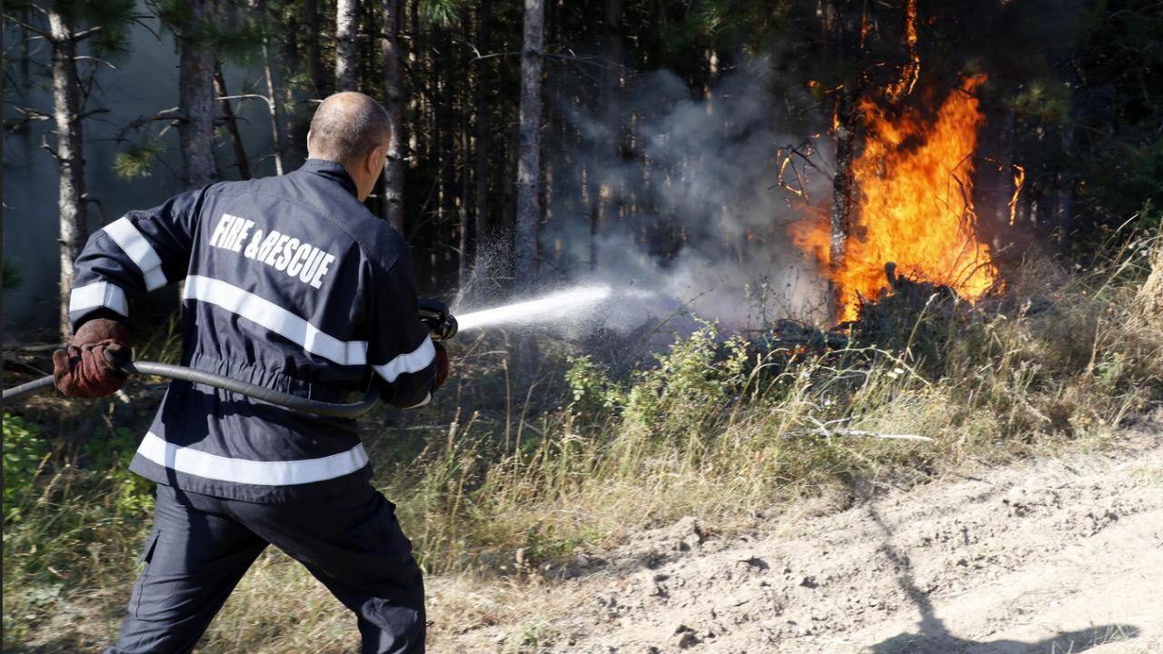 Действията по локализиране на горския пожар над село Виден продължават