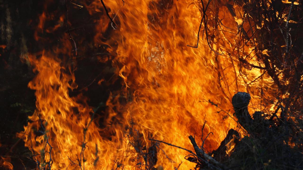 Пожар гори до хасковското село Брягово