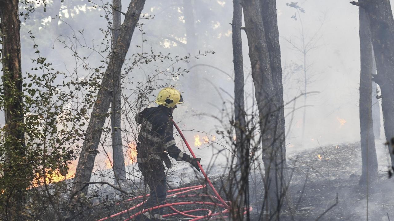 Овладян е пожарът край хасковското с.Брягово