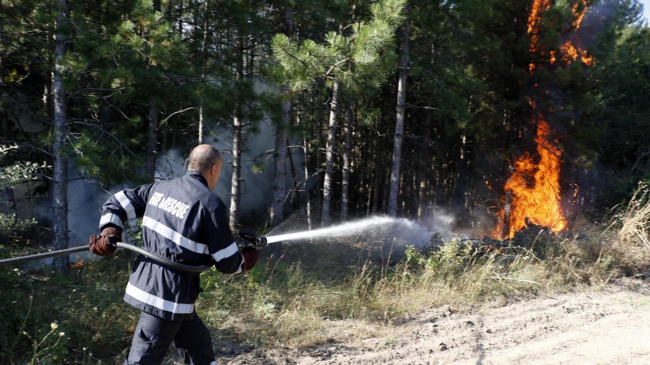 Пожарът над Велинград е овладян