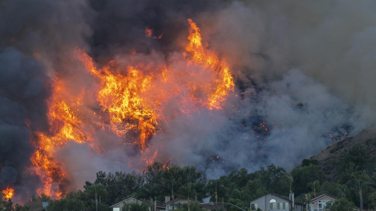 Двама заподозрени подпалвачи заловени в Сицилия, пламъци бушуват в Южна Италия