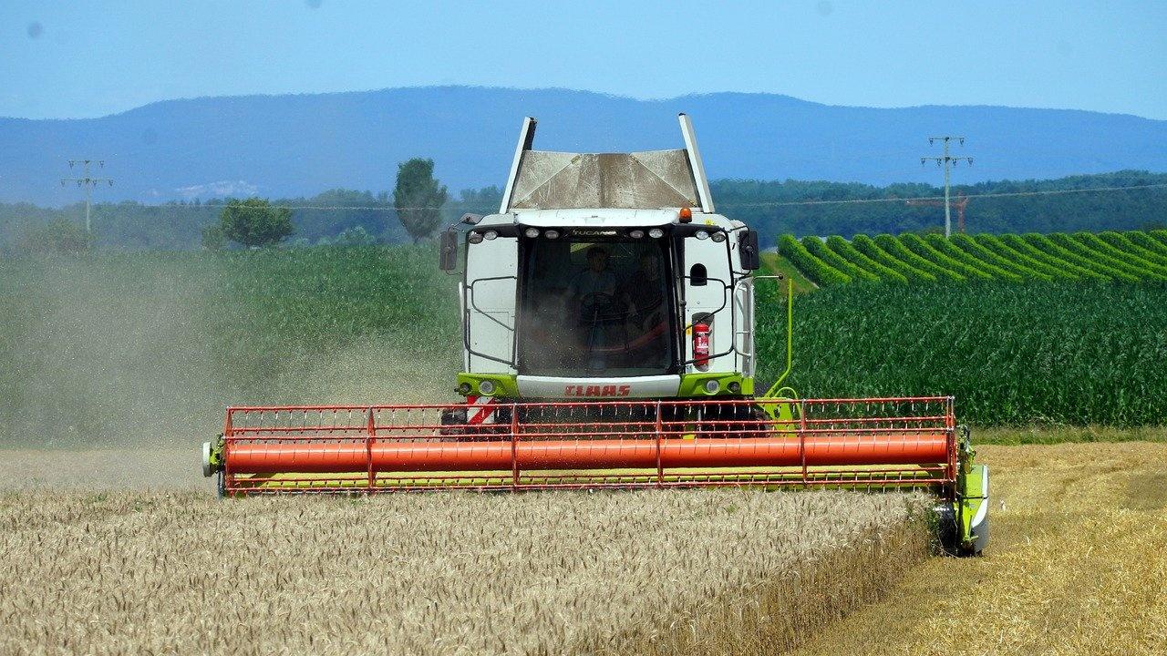 По-висок добив на пшеница и ечемик в Бургаско