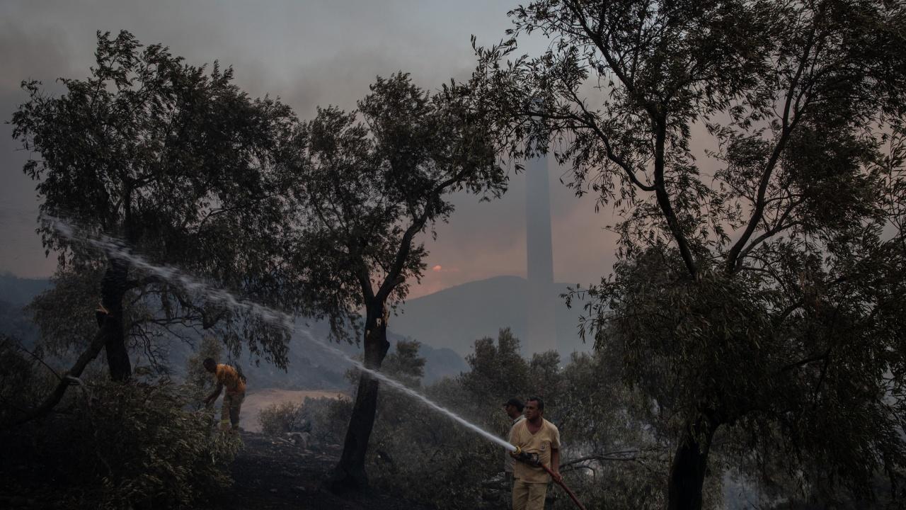 Горски пожар бушува в ТЕЦ в Югозападна Турция