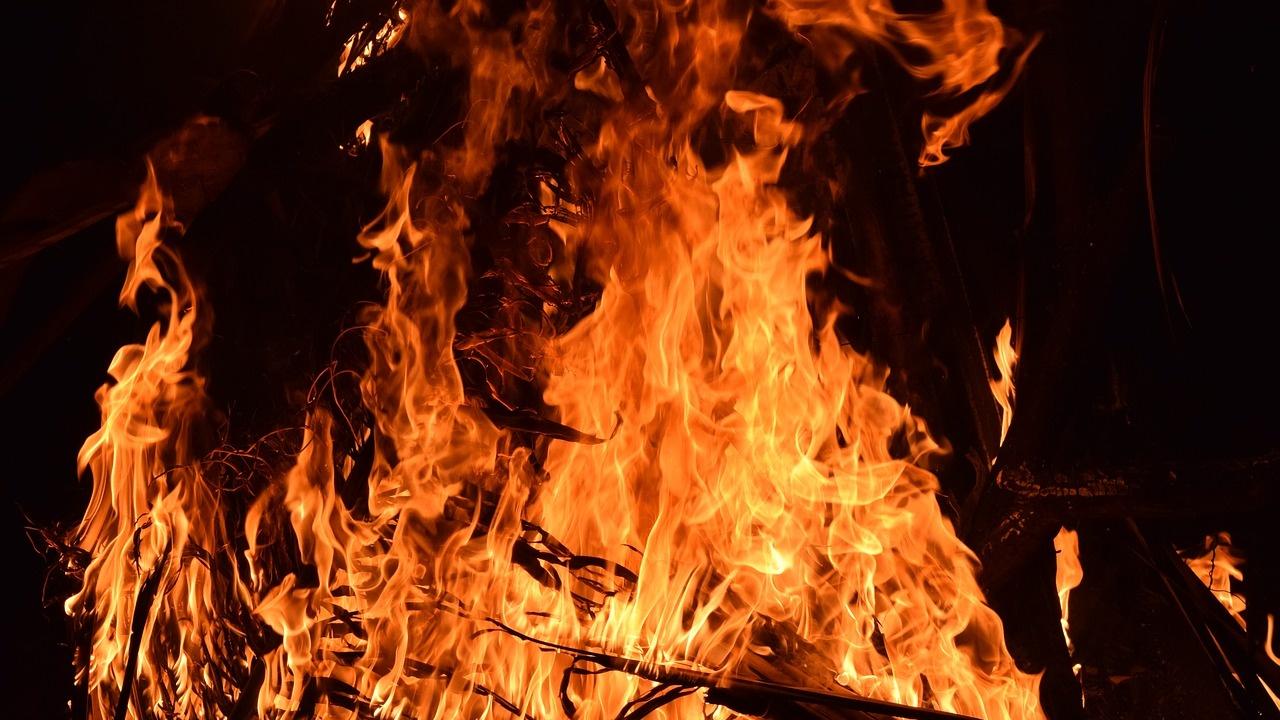 Военнослужещи от Сухопътните войски участват в погасяването на пожари в областите Хасково, Благоевград и Пловдив