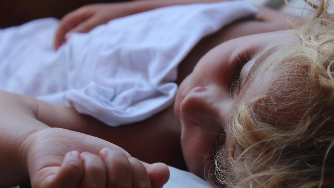 Процеси в мозъчната кора вероятно отговарят за контрола на съня