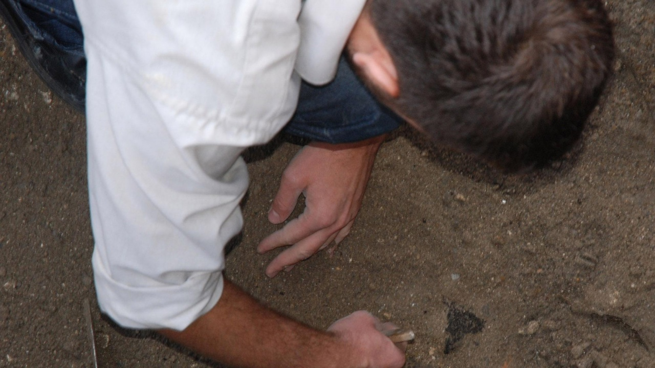 Средновековен некропол с необичайни гробове откриха археолози под старото сметище на Горна Оряховица