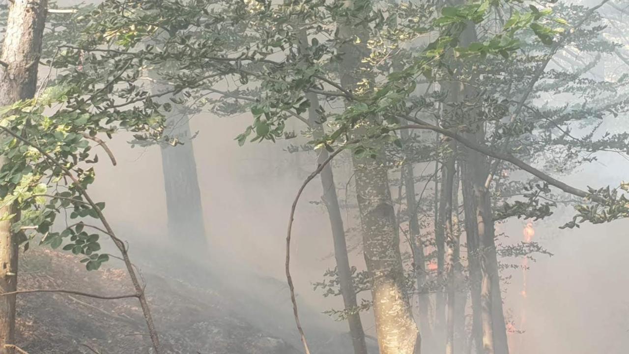 Ситуацията с пожара над Югово се обостря опасно - гасителният хеликоптер се оттегли, доброволците изнемогват