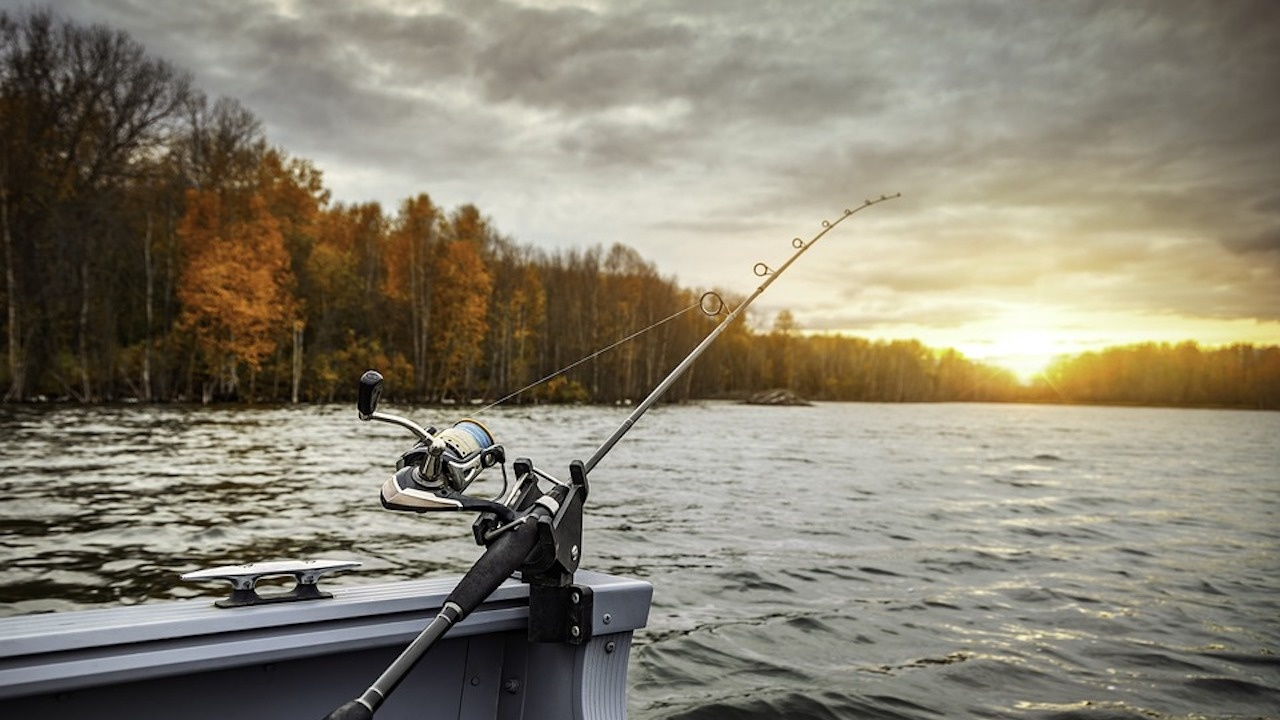 Природозащитници и риболовци от цялата страна излизат на протест