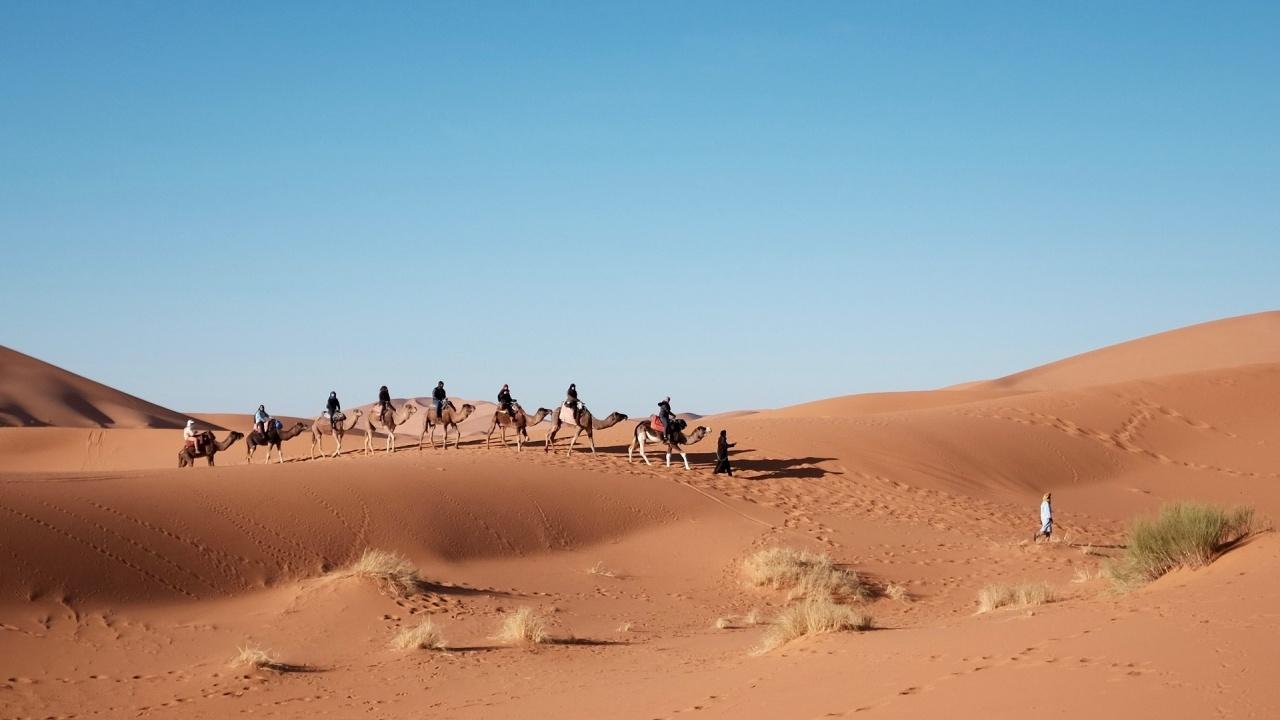 Населението на Египет се е увеличило с четвърт милион за петдесет дни