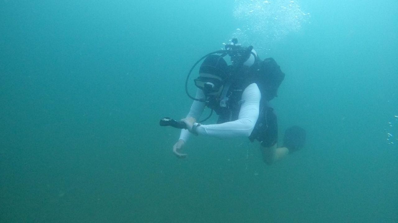 Водолази от инженерните формирования на Сухопътните войски повишиха подготовката си за работа под вода