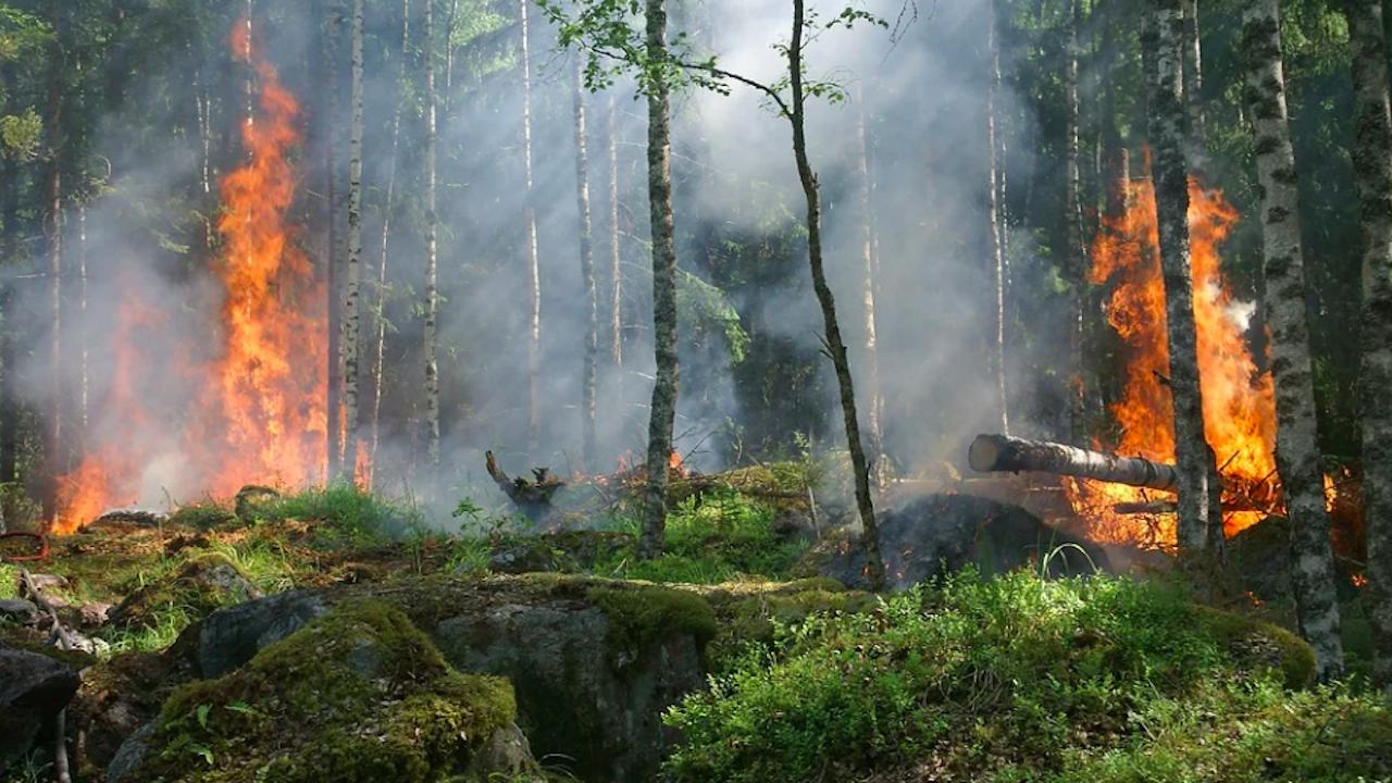 Горски пожар в Испания отне живота на огнеборец и наложи евакуация