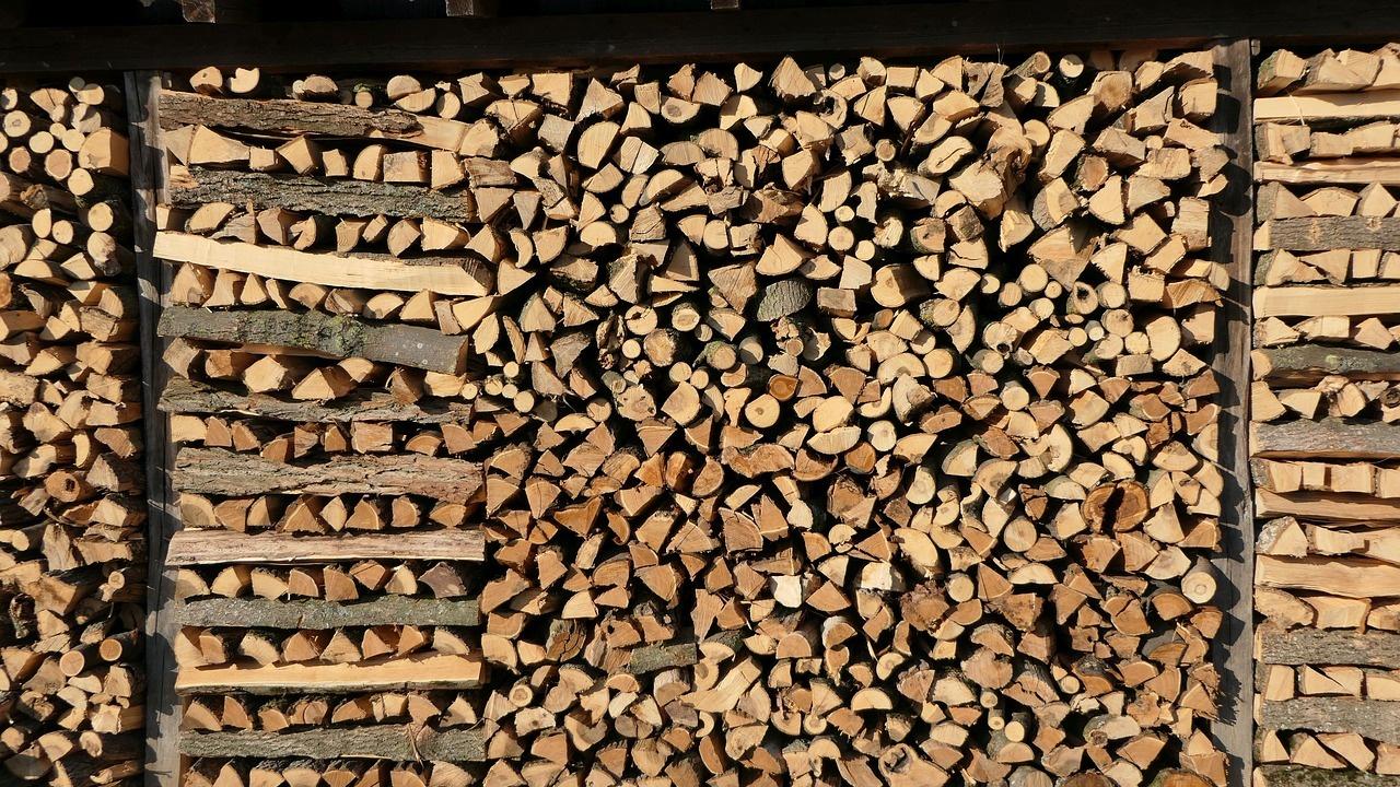 Акция за незаконно придобита дървесина е проведена в Ямболско