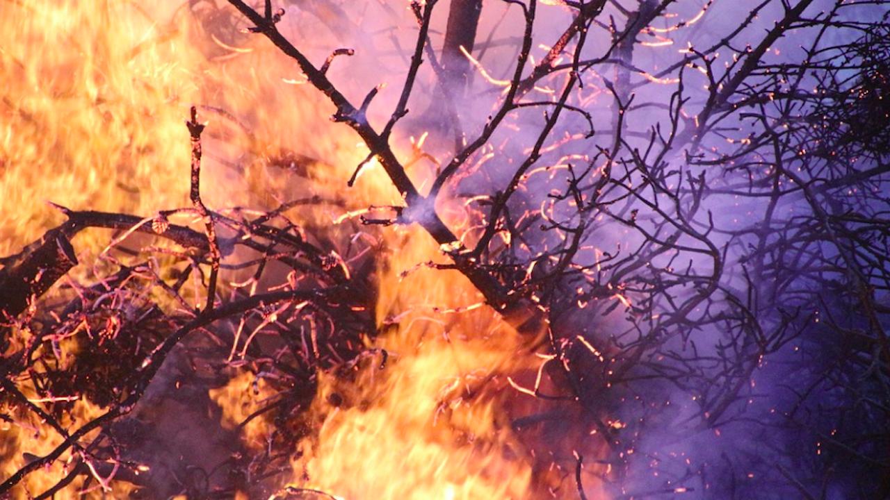Единайсет пожара са гасени в Силистренско между 10 и 13 септември