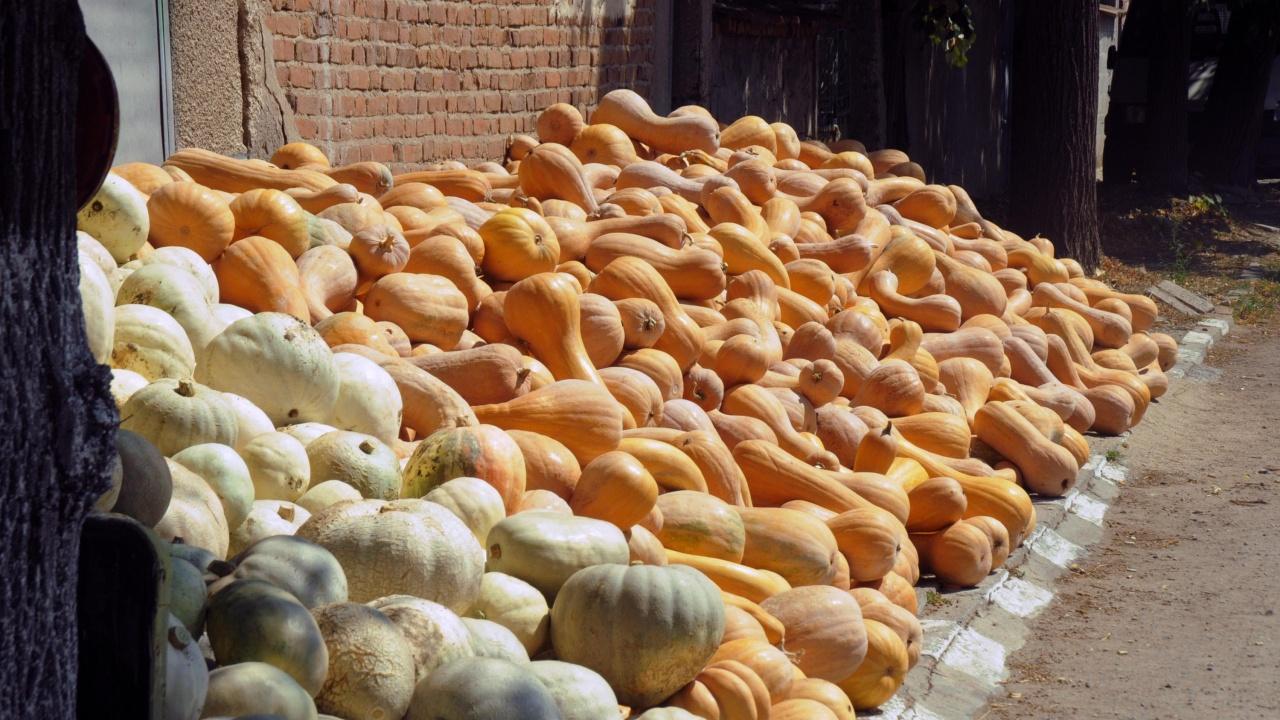 Пазар на тиквите се провежда в село Бяла река