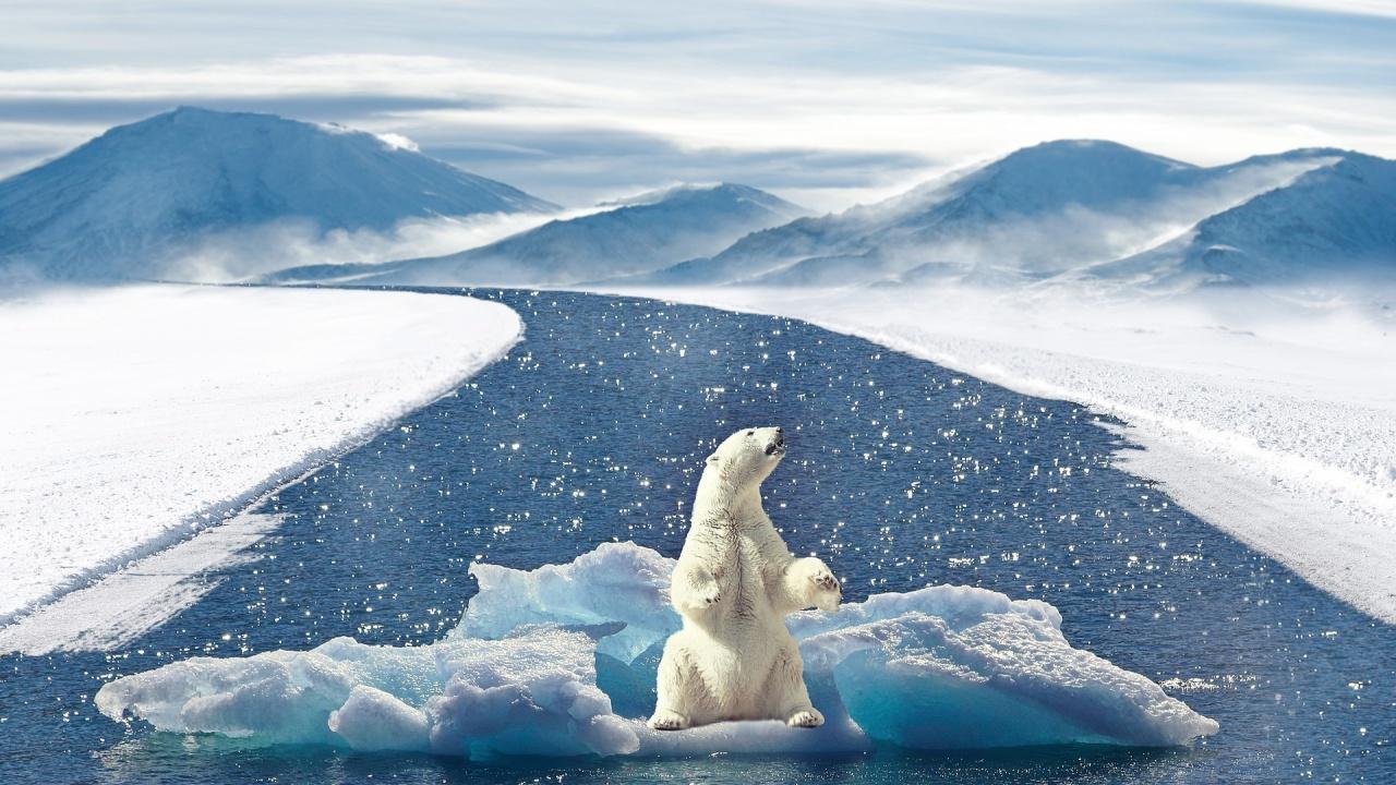 Младите хора по света са силно разтревожени от климатичните промени