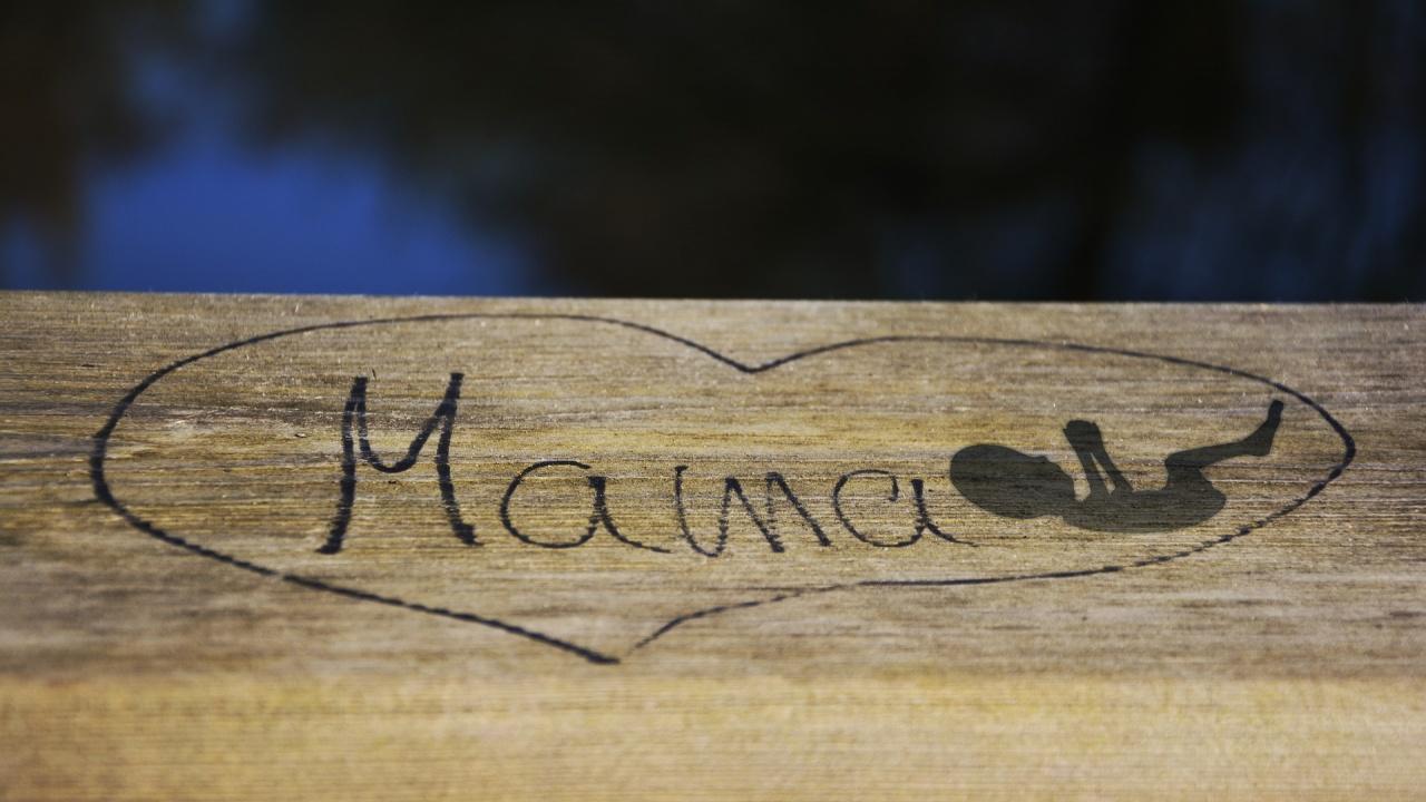 """""""Мама"""" е първата дума, която ще се научат да четат и пишат първолаците"""