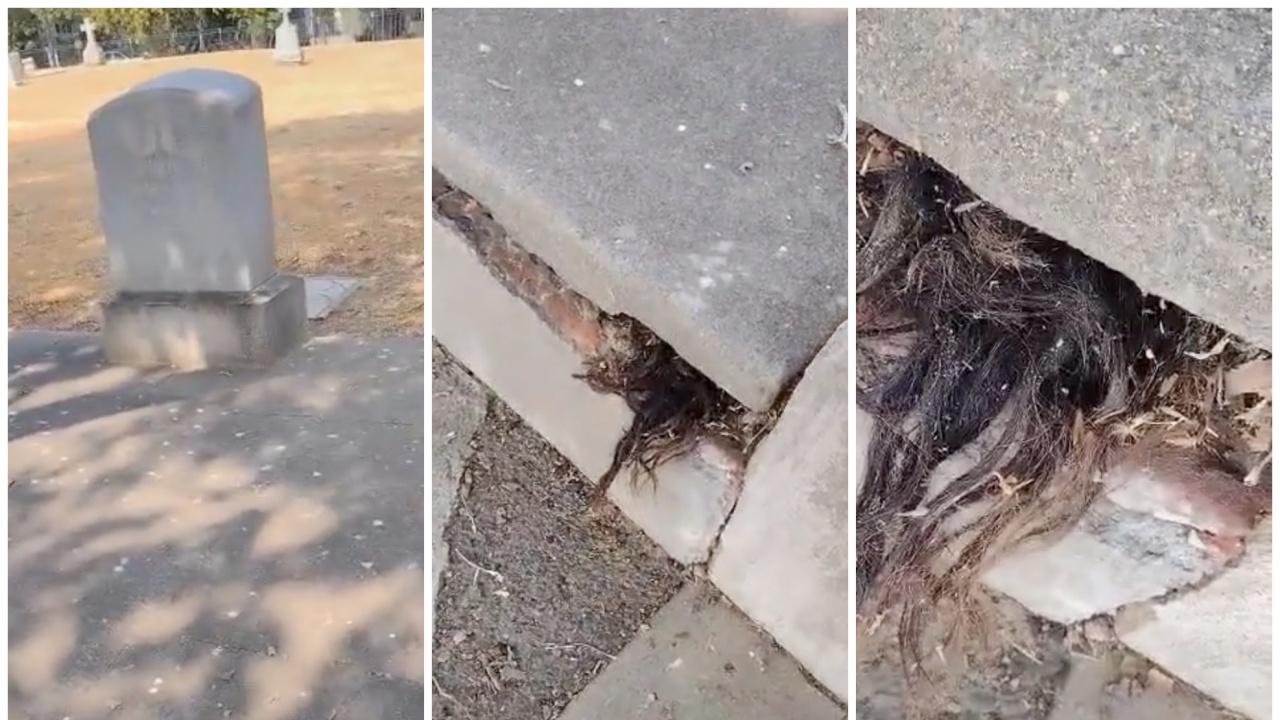 Мъж откри коса, стърчаща от 100-годишен гроб