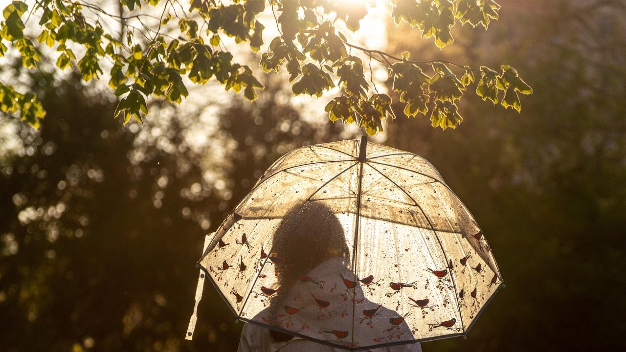 Дъжд и гръмотевици в събота