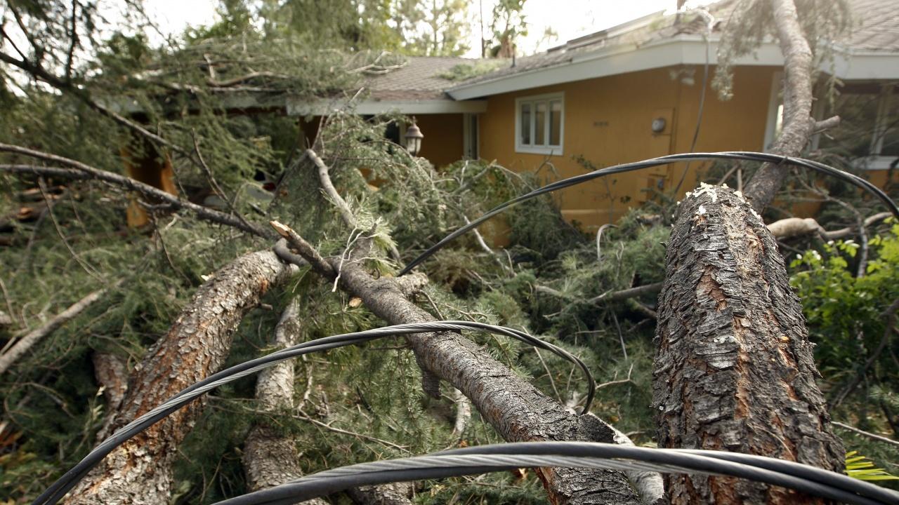 Силен вятър и буря прекъснаха електропроводи и оставиха без ток няколко населени места в Ловешка област