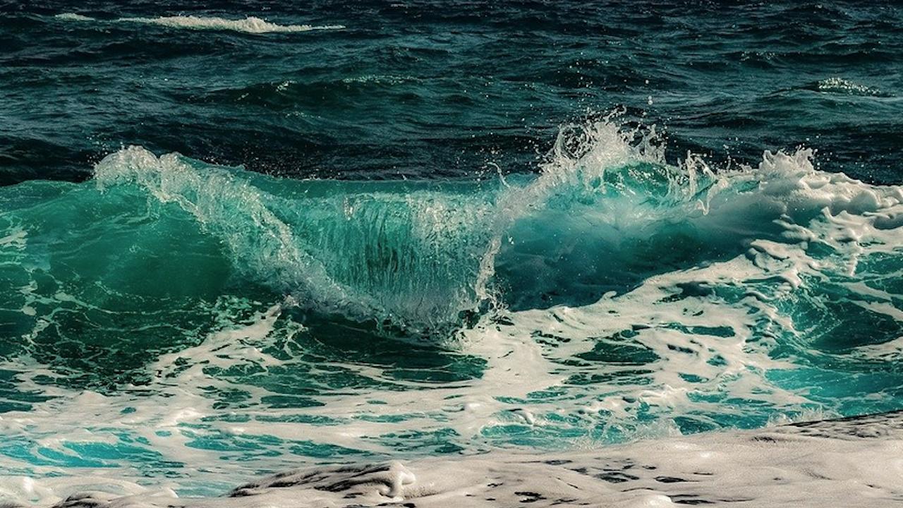 Състоянието на океаните се влошава
