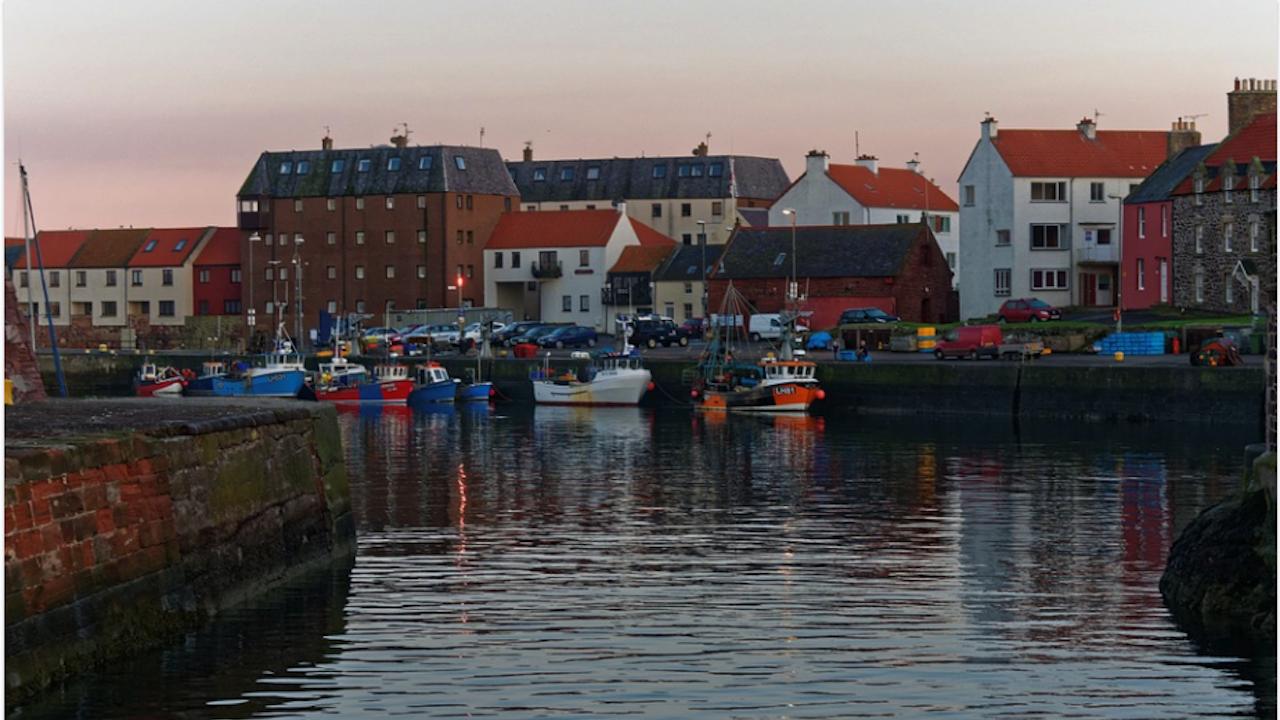 Британски природозащитници блокираха достъпа до пристанище Дувър