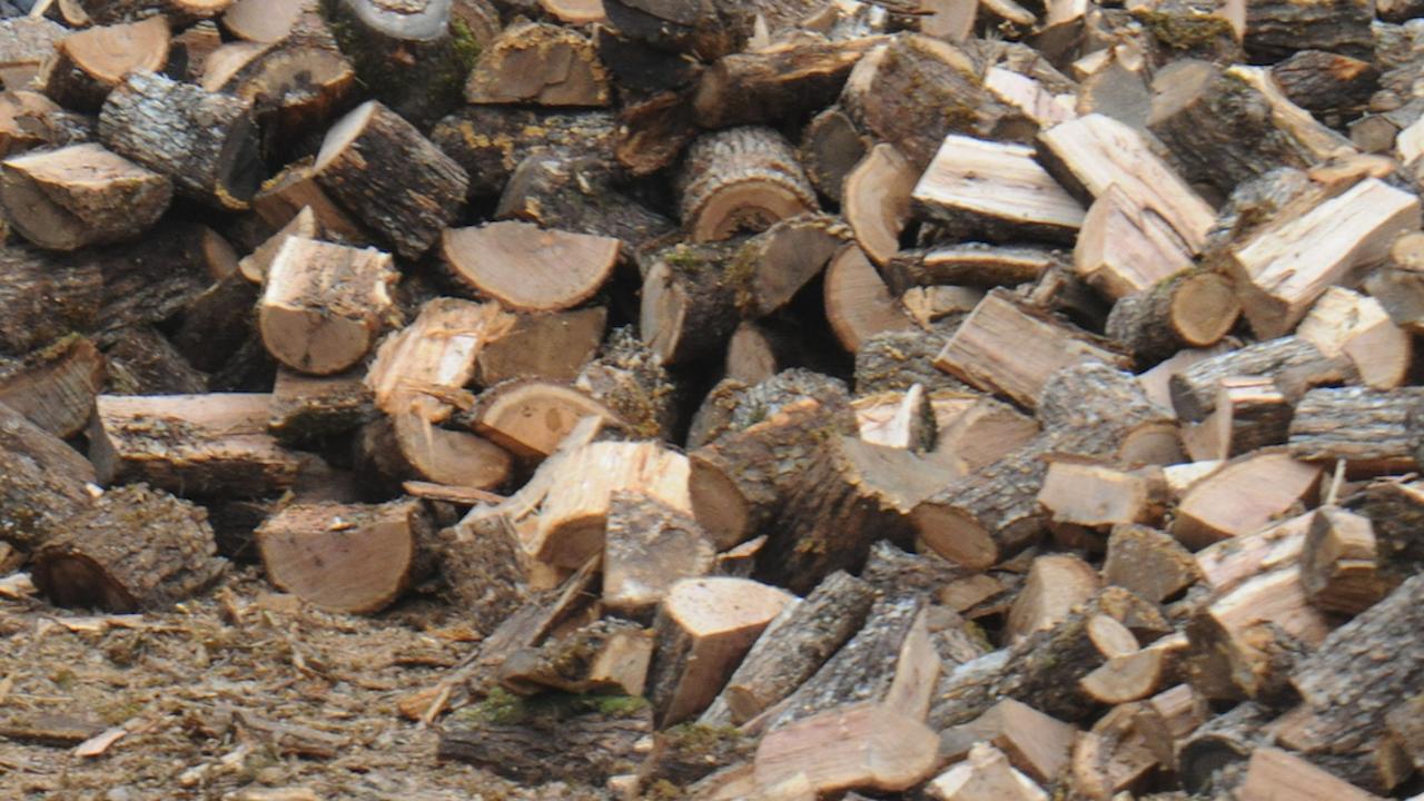 Цената на дървата за огрев се повиши