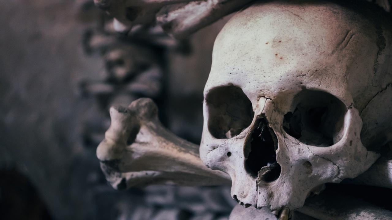 Останки от човешки череп на 32 хиляди години бяха открити в пещера в Китай