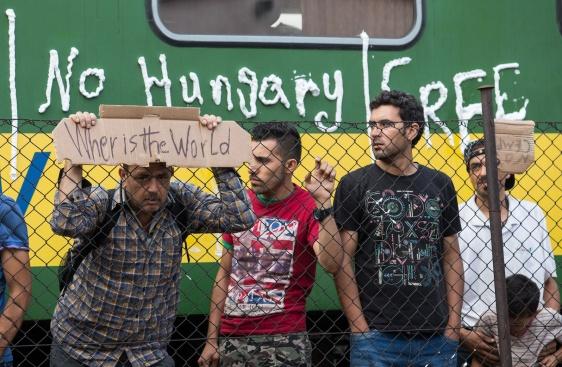 Страхувате ли се от нова бежанска вълна?