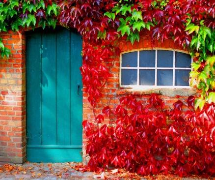 Настроихте ли се на есенна вълна?