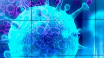 Проф. Георги Момеков: Много е трудно да се създаде лекарство за новия коронавирус