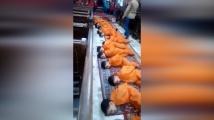 Видео с деца на ИД разбуни Египет