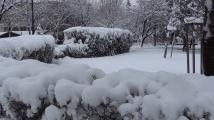 Проф. Рачев разкри ще продължи ли ноемврийската зима и през декември и ще посрещнем ли Коледа със сняг