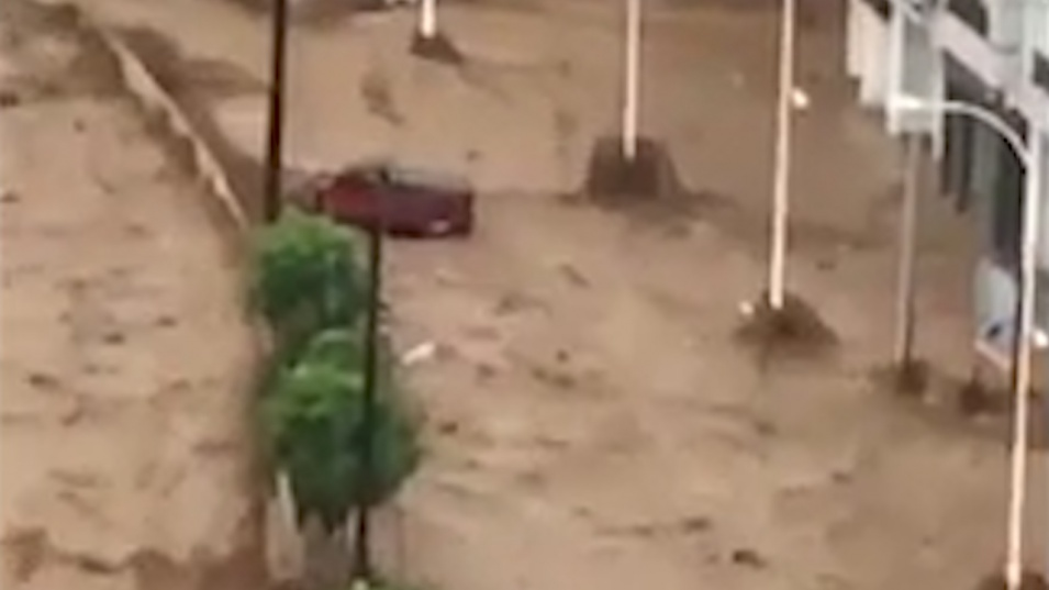 Ердоган обяви бедствено положение в три провинции